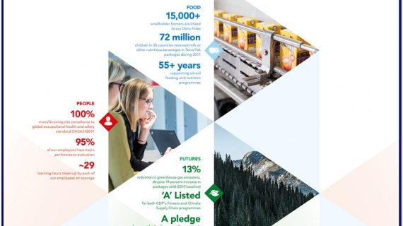 Penulis Sustainability Report