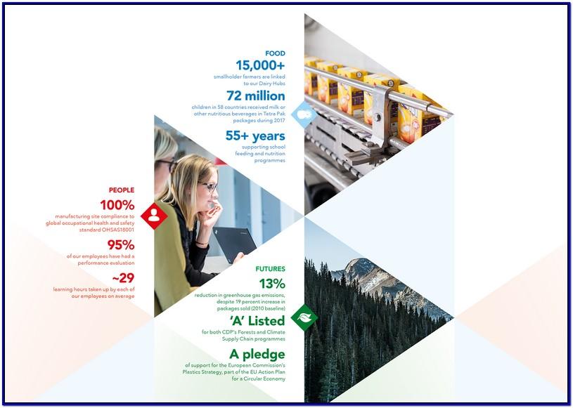 Penulis Sustainability Report